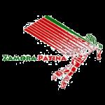 Zamora Patina